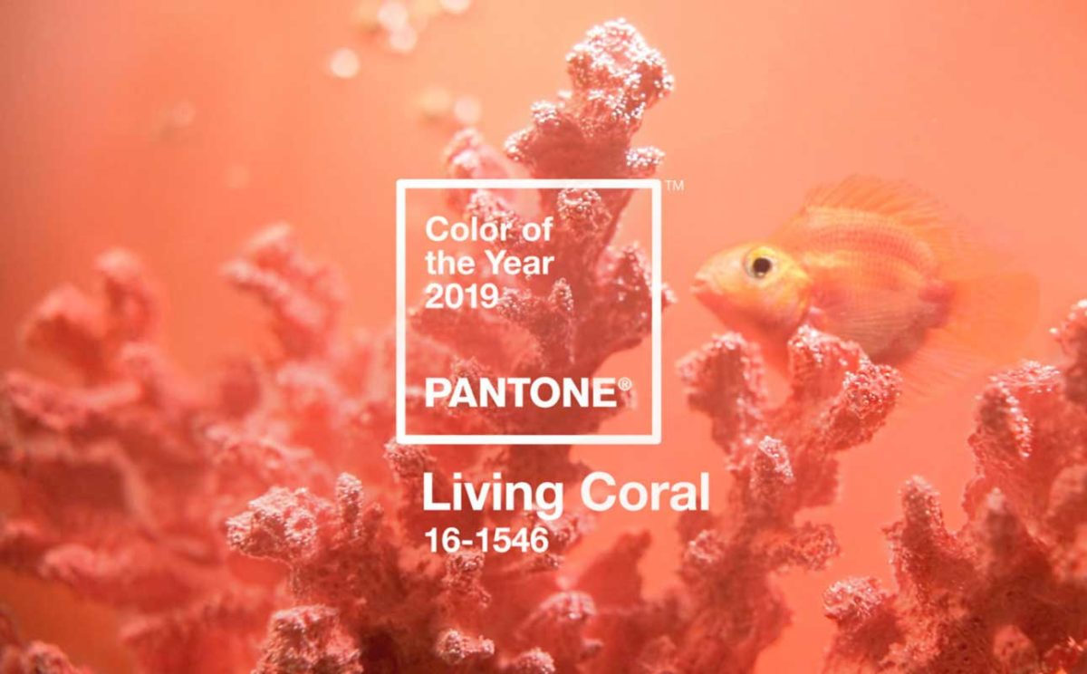 colore del anno 2019 Pantone
