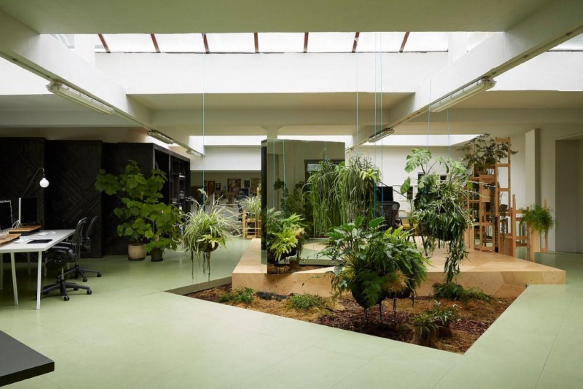 Giardino interno come crearsi un\u0027oasi verde nella propria casa