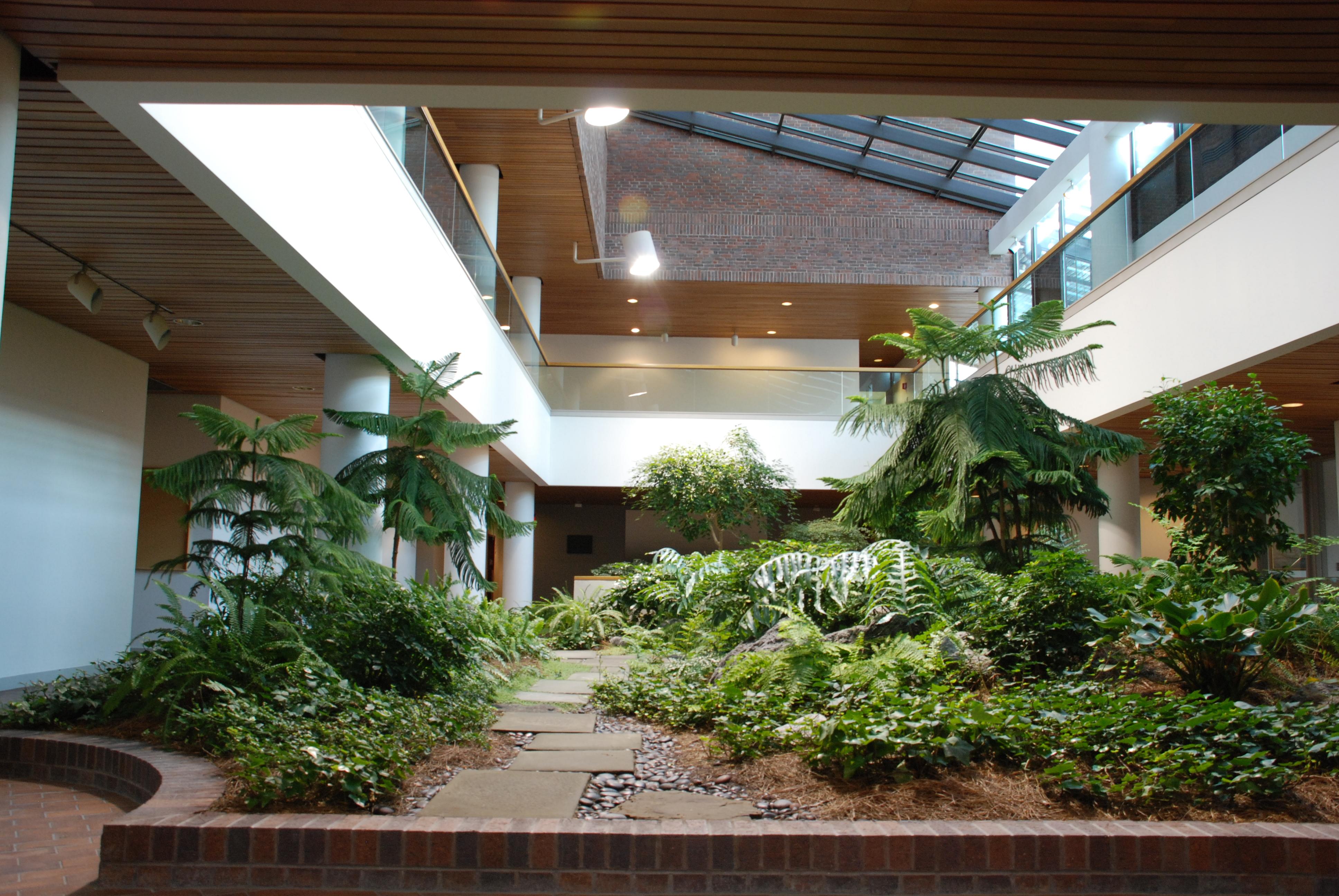 Giardino interno come crearsi un oasi verde nella propria - Giardino interno casa ...