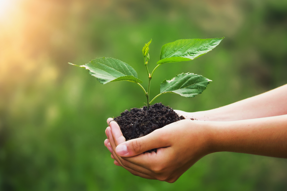 abitare sostenibile abitudini