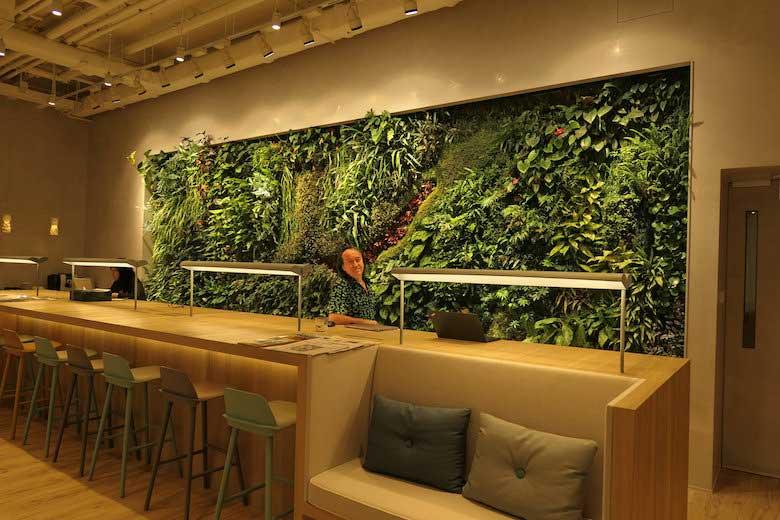progetti muro vegetale