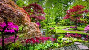 giardino zen architettura giapponese