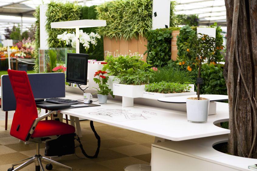 ufficio green