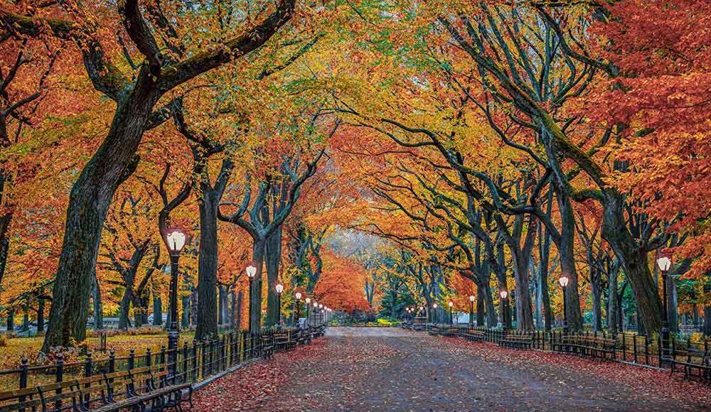 Le citt d autunno i 10 paesaggi pi colorati for Paesaggi autunnali per desktop