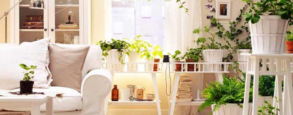 aspetto green della casa smart