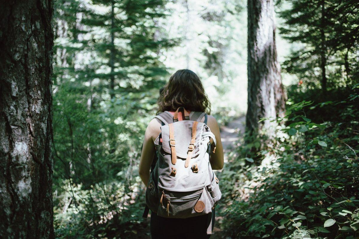 habitante turismo ecologico bosco