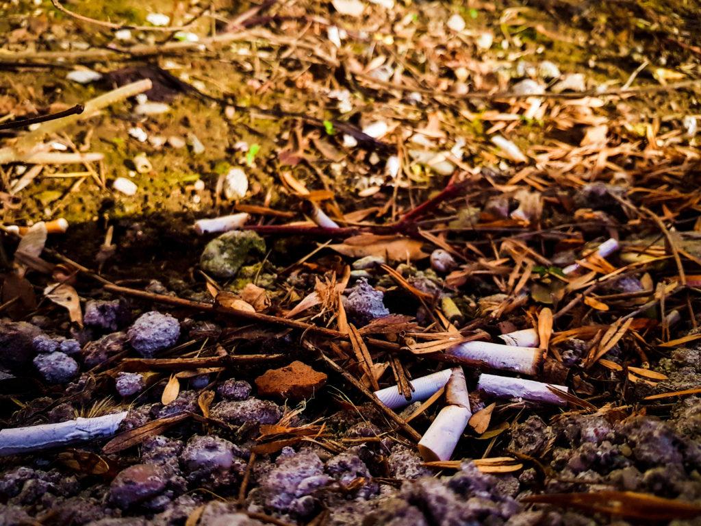 sigarette plastica inquinamento habitante
