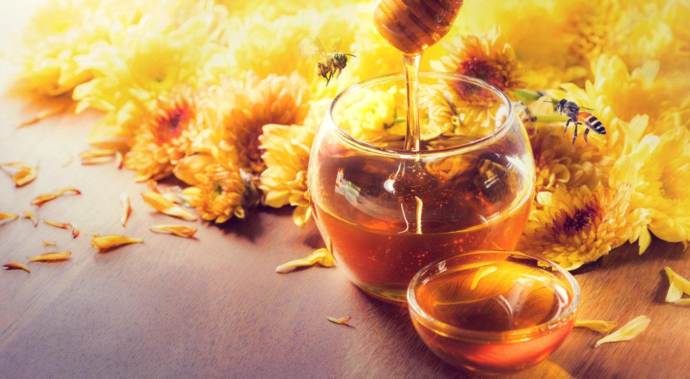 miele non scsade mai habitante
