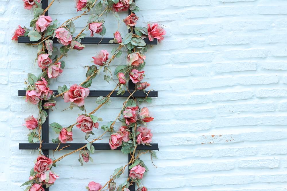 fiori finti habitante