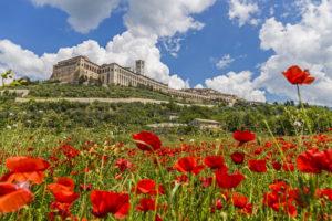 Calendimaggio Assisi festa di primavera programma