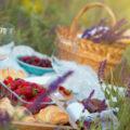 8 Idee per organizzare un picnic perfetto