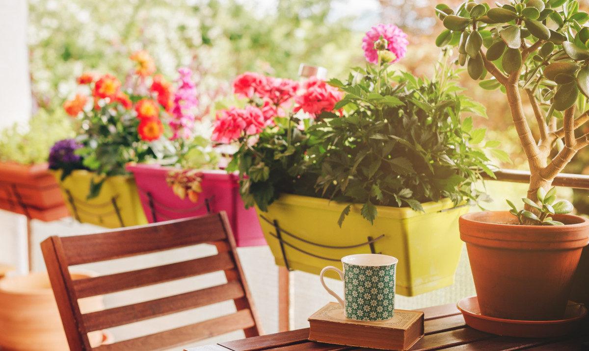 Come avere uno splendido balcone fiorito