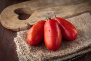La raccolta dei pomodori San Marzano a Luglio