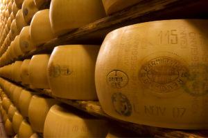 Il Parmigiano Reggiano di Montagna in 33 caseifici