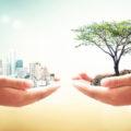 Novità sulla sostenibilità ambientale in edilizia