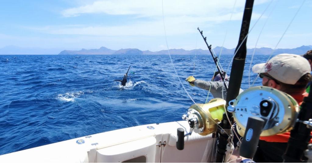 vacanze di pesca