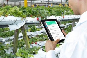 Innovazione e agroalimentare: a Siena Agrifood Mezzagro