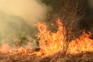 Africa in fiamme