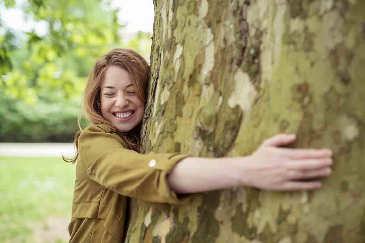 Adottare un albero si può, ecco come fare
