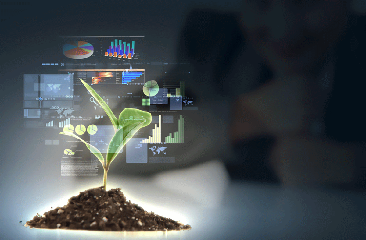 Premio per lo Sviluppo Sostenibile 2019 a Città e Imprese Green