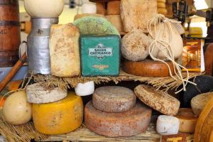 Cheese 2019 a Bra