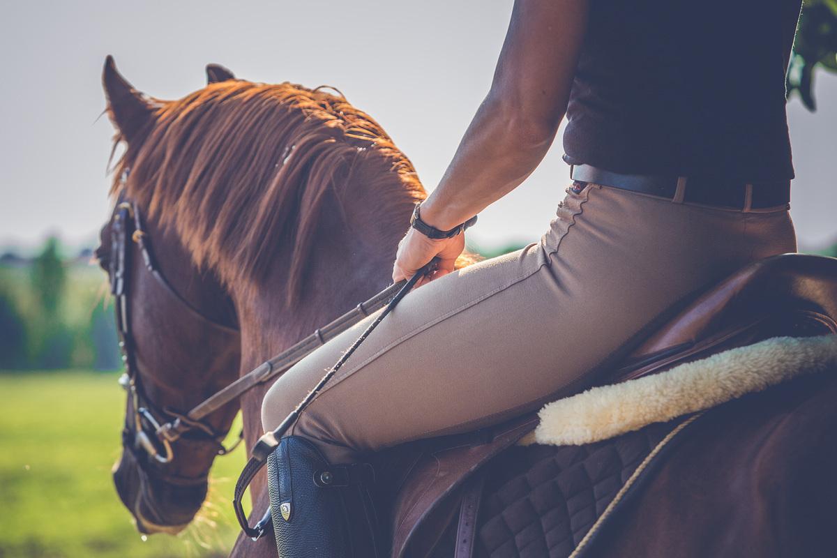 equitazione in autunno