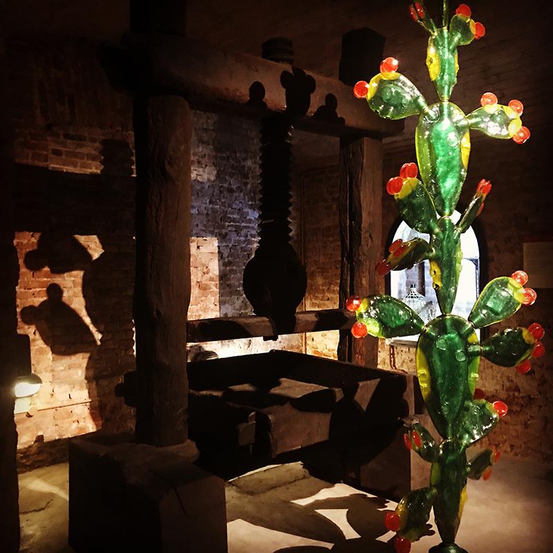 """""""Fico d'India"""", di Silvio Vigliaturo, nella mostra ospitata a Casa Martini"""