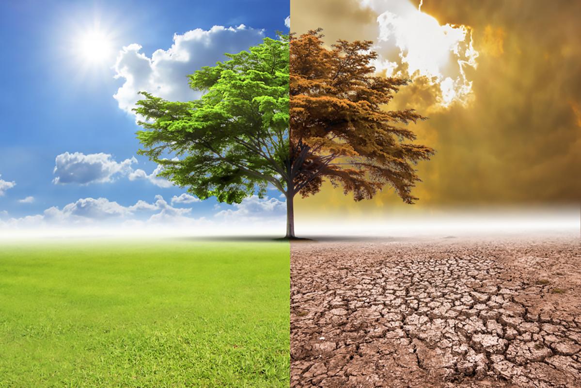 Università di Torino: agricoltori e ricercatori uniti per fronteggiare i cambiamenti climatici