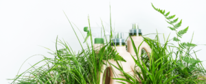 Detergenti a basso impatto ambientiale