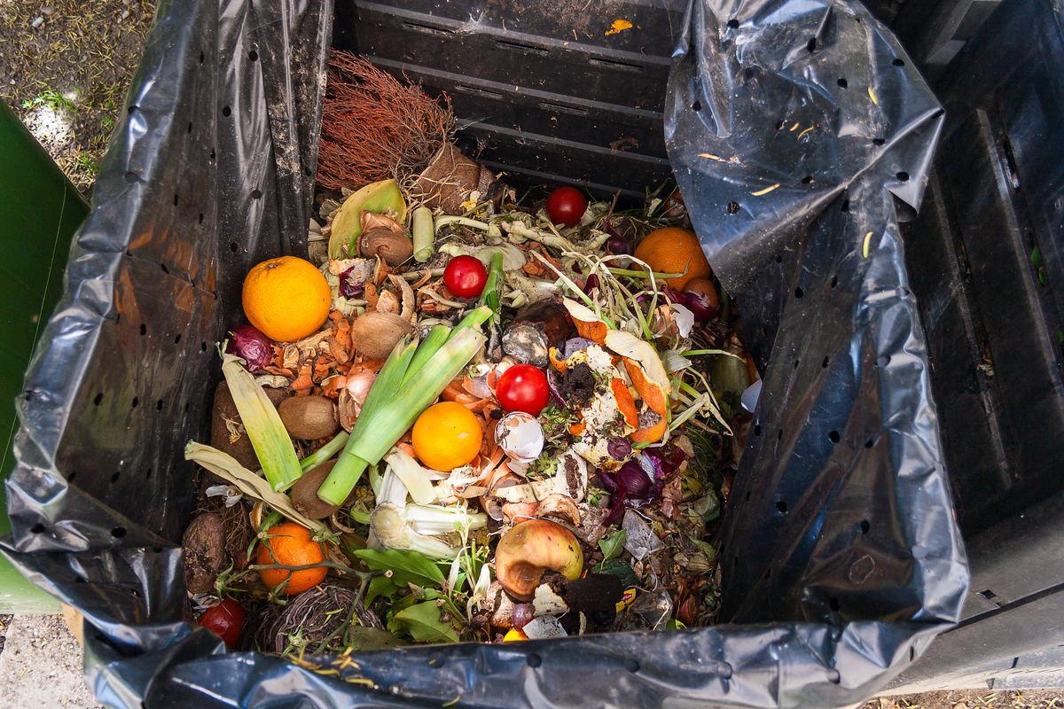 spreco di cibo, Milano costruisce degli hub di raccolta