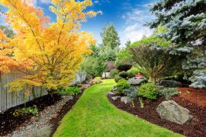 Creare un giardino ecosostenibile