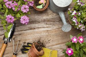 mantenere un giardino