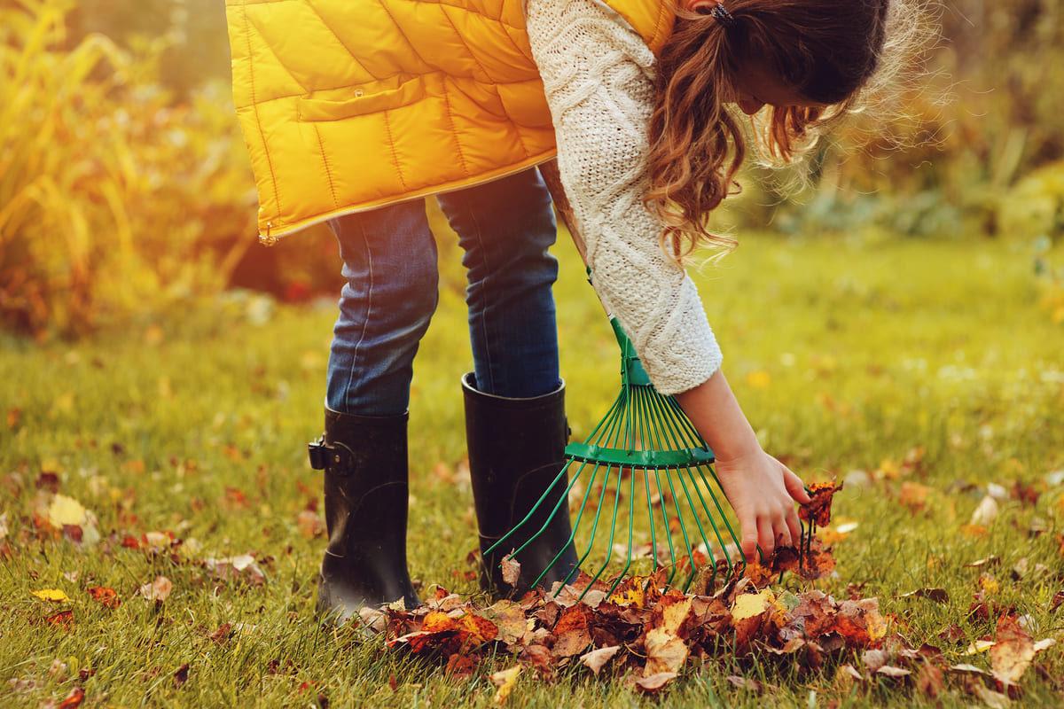 Lavori in giardino nel mese di novembre