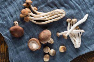 Le migliori 5 ricette con i funghi