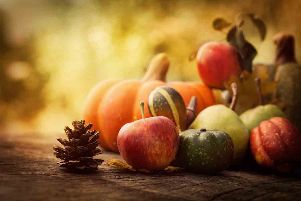 Frutta e verdura di stagione a novembre
