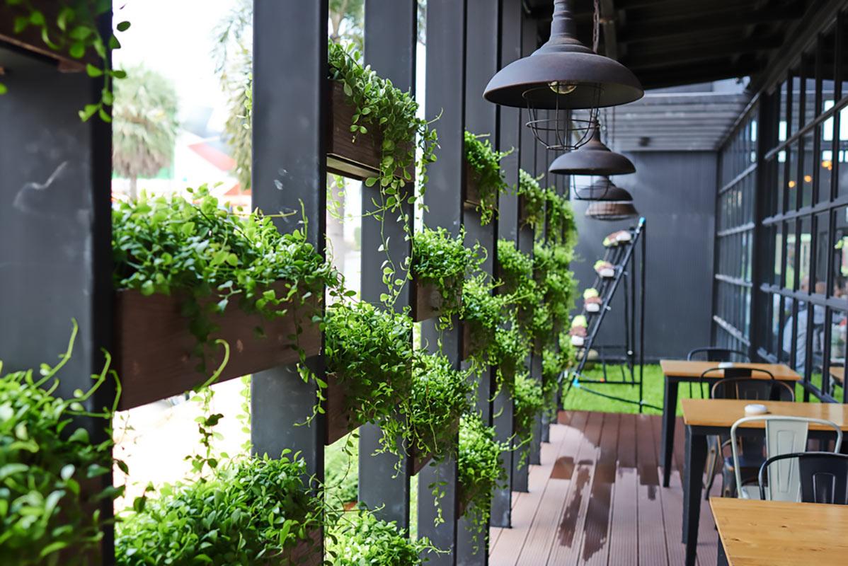 giardini verticali in casa
