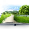 libri green