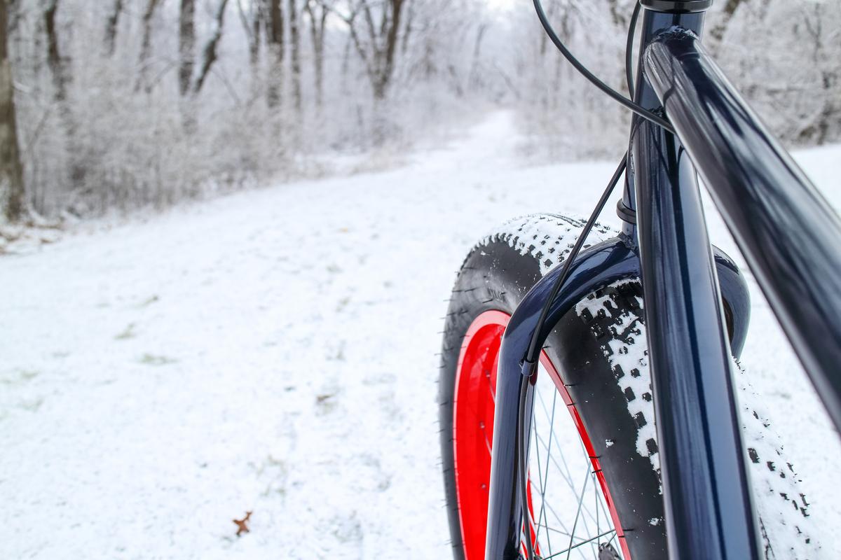 Bici in inverno