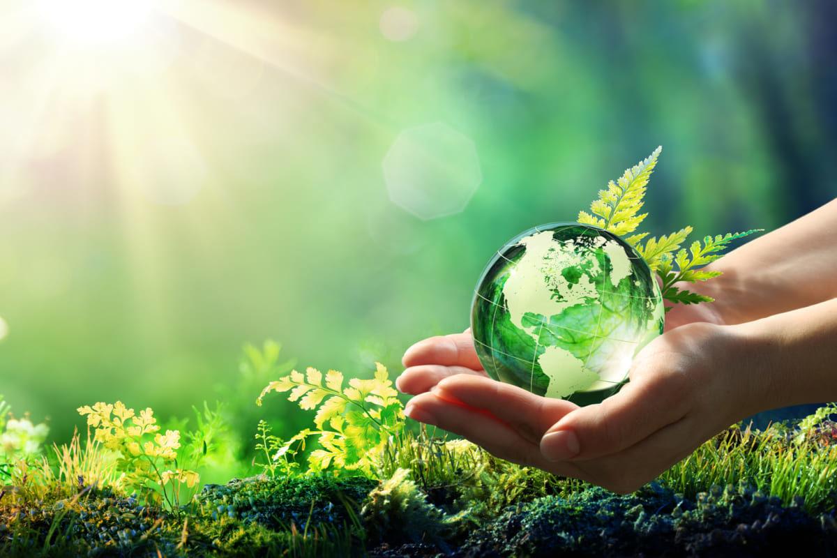 Ecco quali sono le aziende più sostenibili in Italia