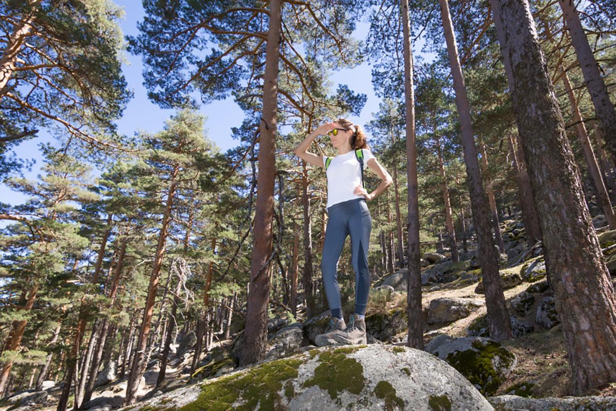 vivere nel bosco