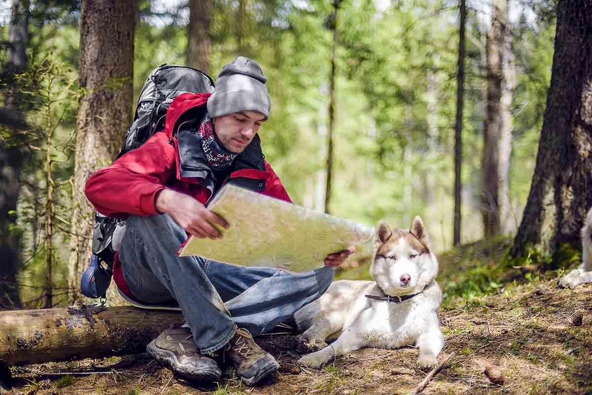 Andare in vacanza con il cane in montagna: tutto ciò che devi sapere