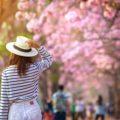 Le 5 migliori mete per la primavera 2020