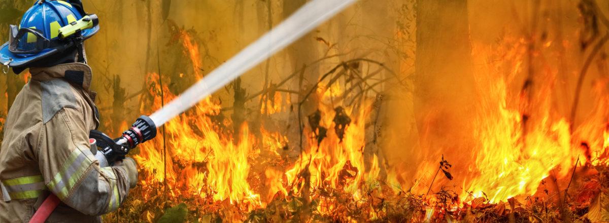 incendi australia