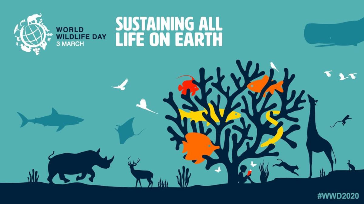 Giornata mondiale delle specie selvatiche