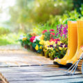 Lavori in giardino nel mese di marzo