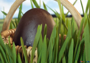 decorare l'uovo di cioccolato