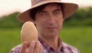 patata di bologna dop