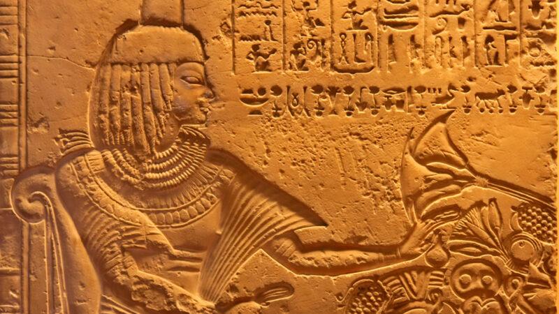 Antichi egizi storia della alimentazione
