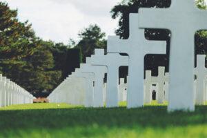 Capsula Mundi cimitero