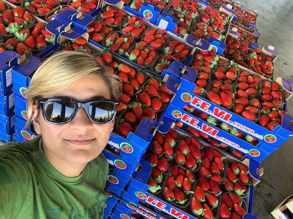 Fragola Candonga, eccellenza lucana. Intervista a Maria Ferrara di Fevi Frutta